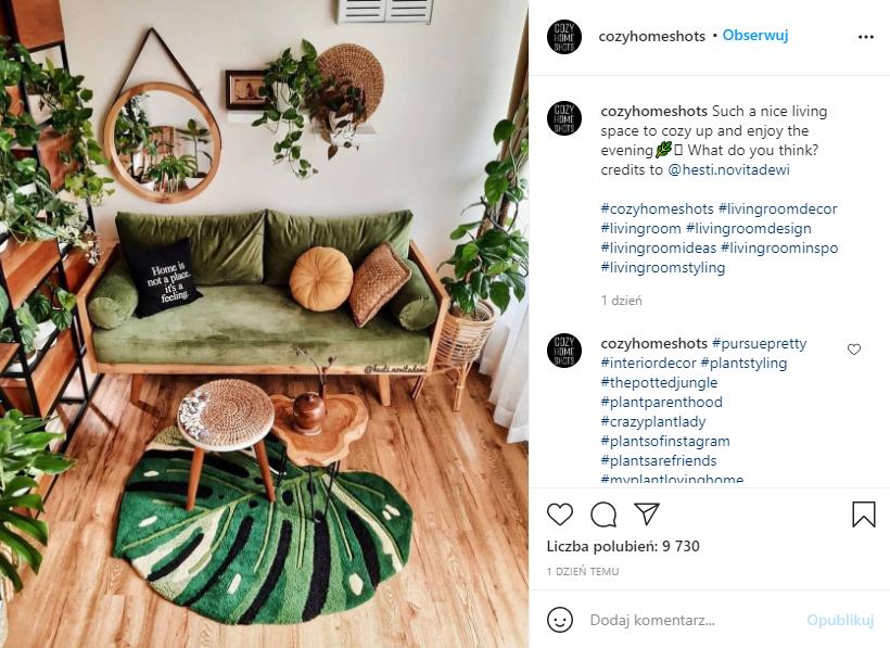 odświeżenie salonu za pomocą stylu urban jungle