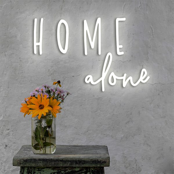 ledon home alone_wiz
